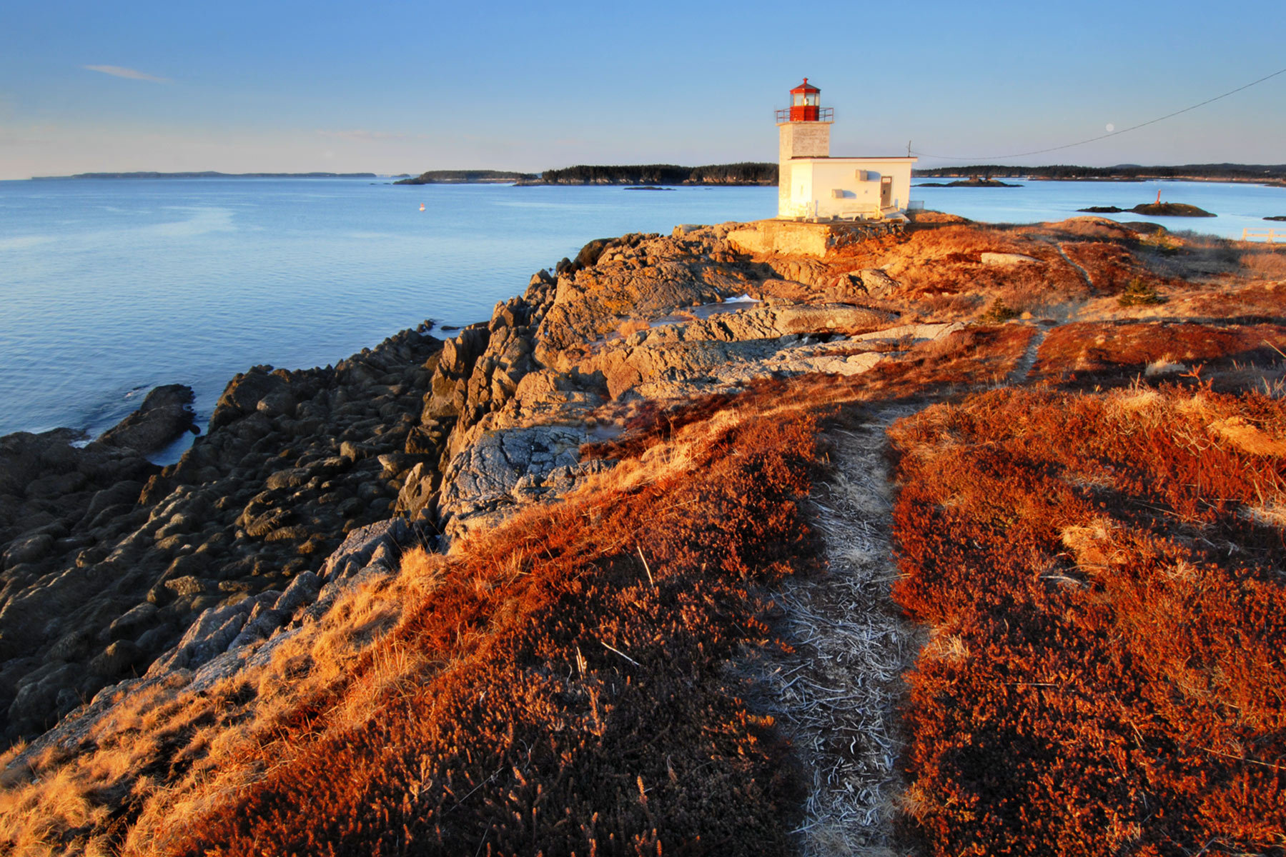 there is a trail up the hill from pea point light to a knoll covered in grasses and crowberry that are particularly snuggly and offers great views of the bay and the islands on a clear day.  from here you can see the wolves, a small group of islands half way out to grand manan, and grand manan itself as well as campobello, deer island and all the other small islands dotting the bay.