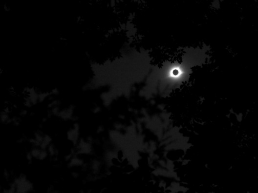 Eclipse - Nashville, Tennessee