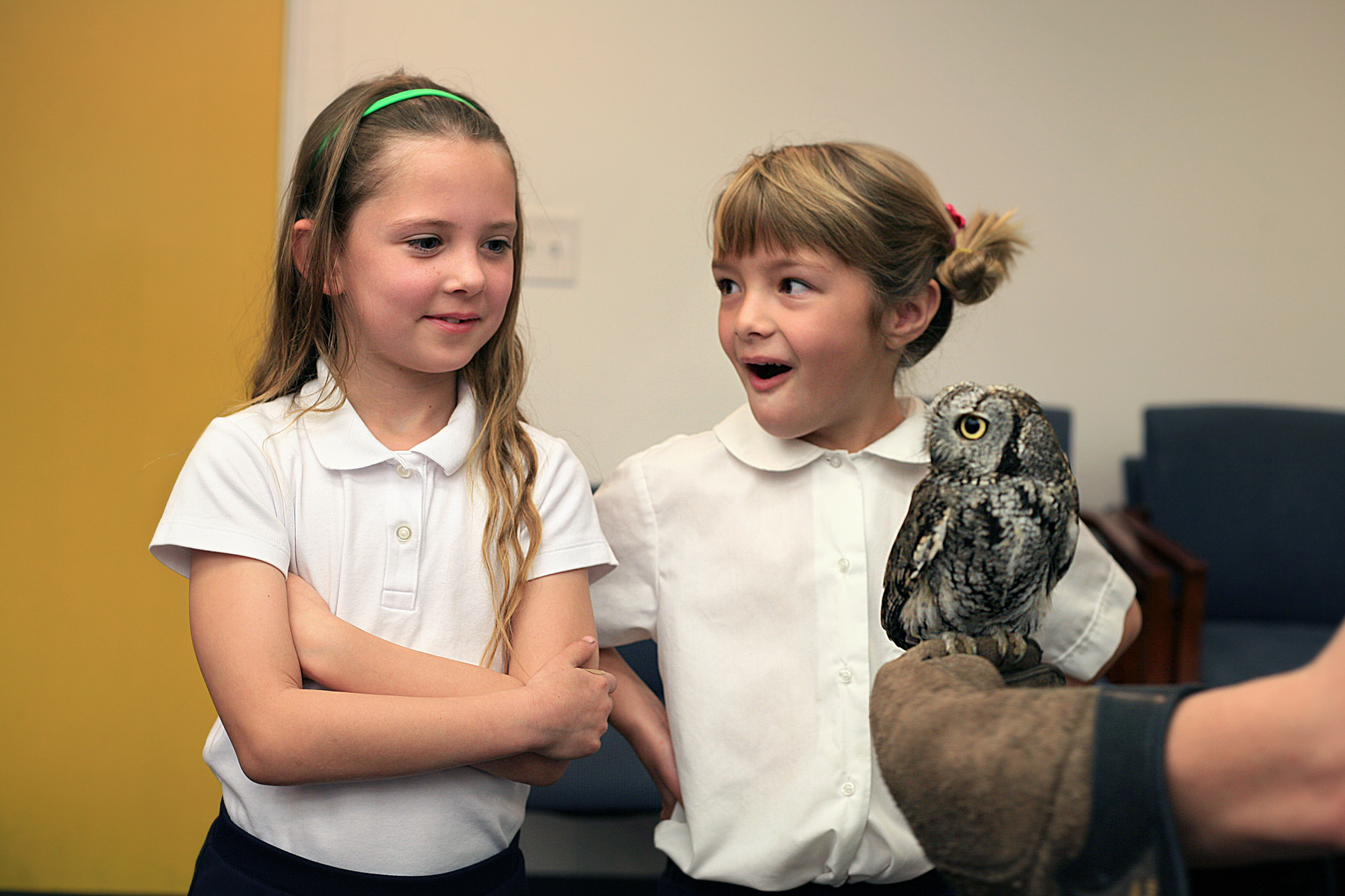 Harbor Day first graders Sheridan Hofer, 6, and Kaitlyn Dostert, 7, meet Gus, a Western screech owl, when the Traveling Scientist visited the school on Friday.