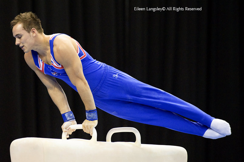 Daniel Keatings winner of the gold medal on Pommel Horse at the 2010 Europan Gymnastics Championships in Birmingham.